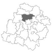 zgierski